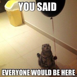Sad+birthday+cat+hardcore+lonely+cat+waiting+for+some+presents_5554b8_3810511.jpg